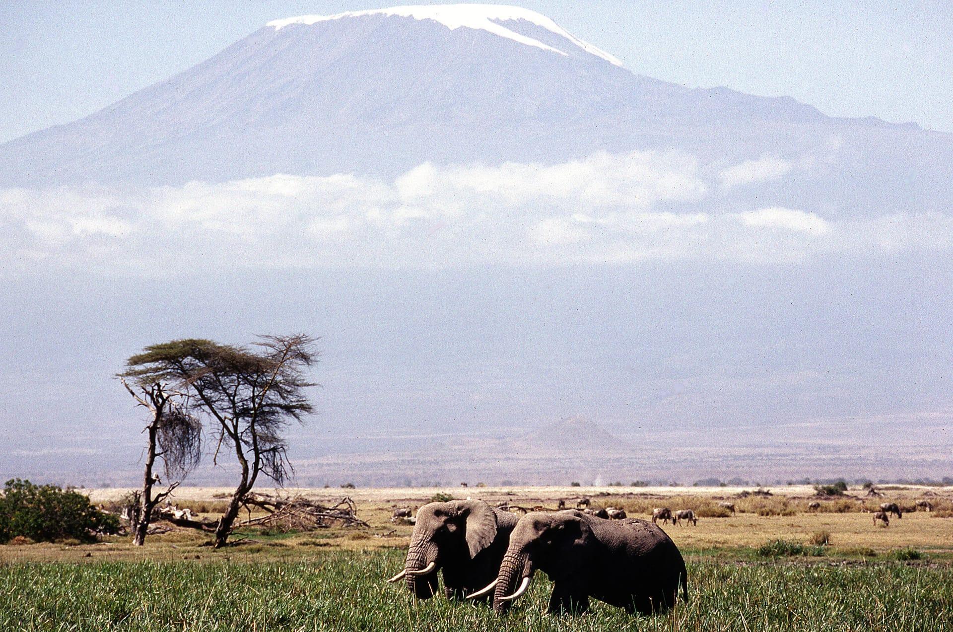 Le Kilimandjaro, plus haut somment de Tanzanie